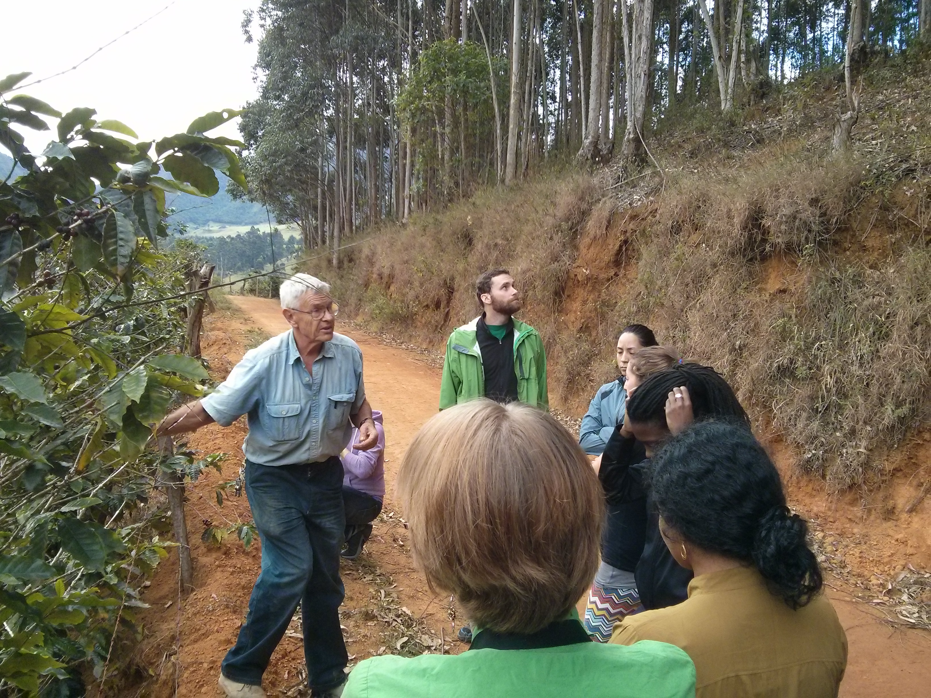 Brazil: Rural Livelihoods and Food Systems